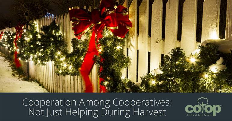 Cooperation Among Cooperatives: Not Just Helping During Harvest