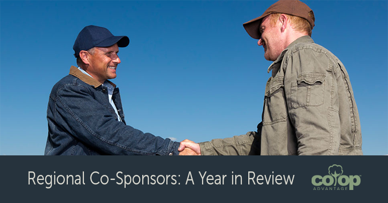 Regional Co-Sponsors: A Year in Review