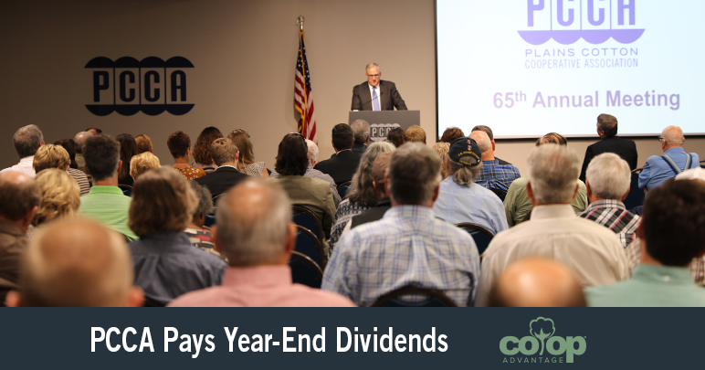 PCCA Year End Dividends