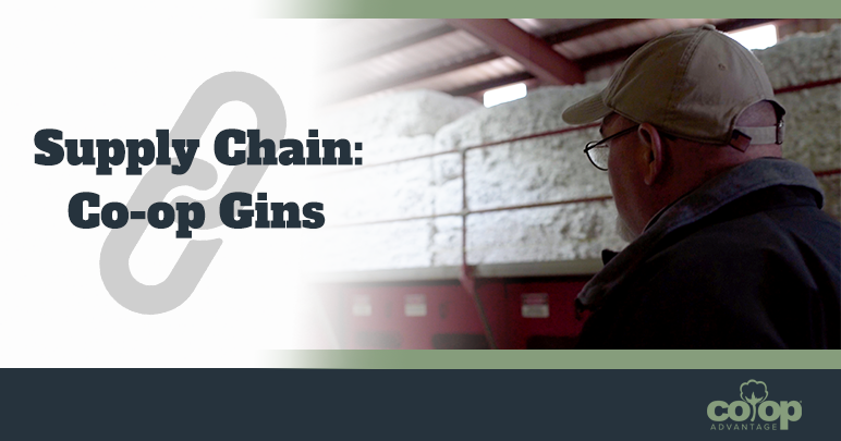 Supply Chain Co-op Gin Blog