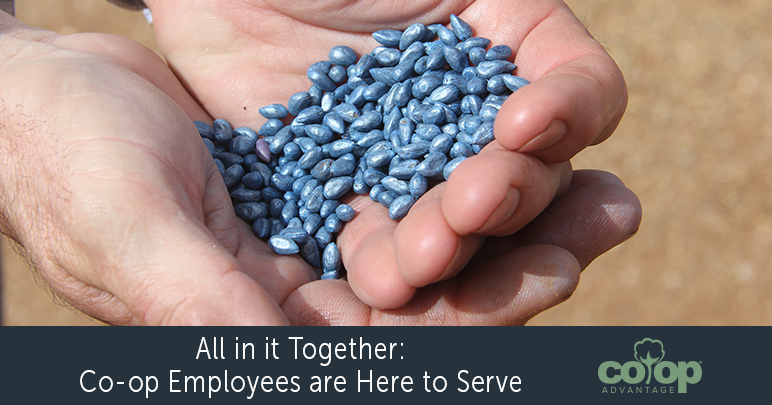 All in it Together: Co-op Employees are Here to Serve